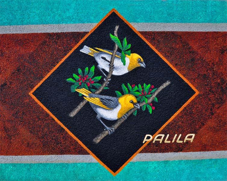 palila