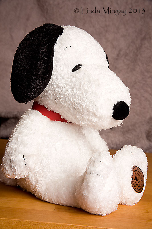 3rd February 2013 - Snoopy