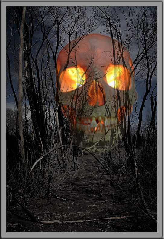 October 31 - If You Go Out In The Woods Tonight....