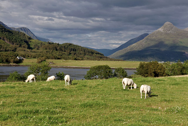On the banks of Loch Leven, Ballachulish