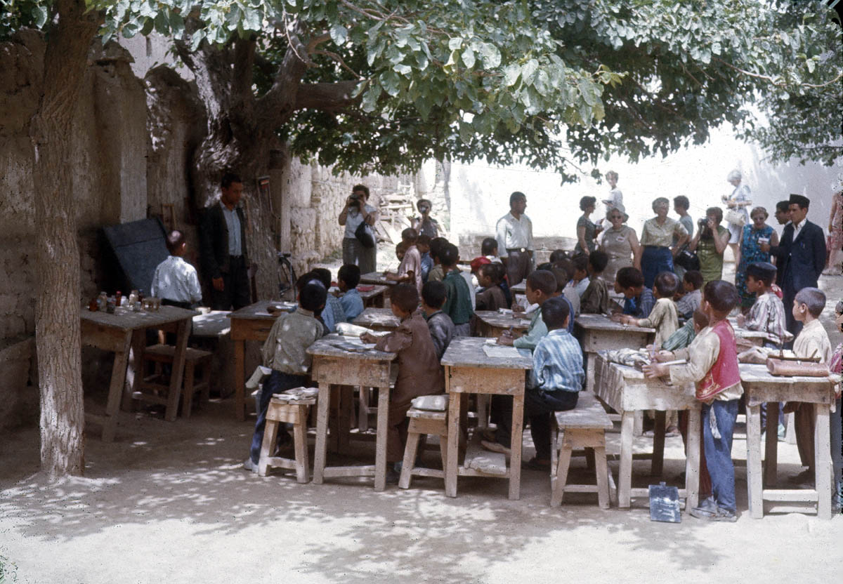 Education Under the Trees