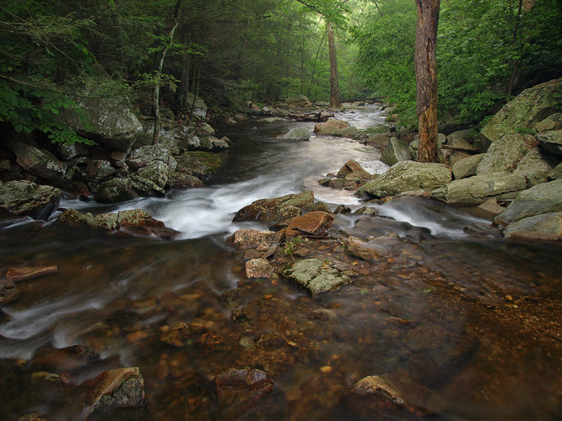 wHunting Creek10 May 31 P5312037.jpg