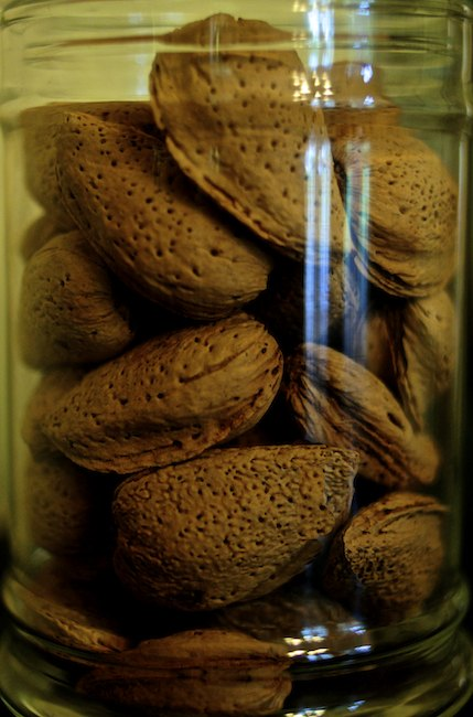 Almonds in Jar, Bidwell Mansion