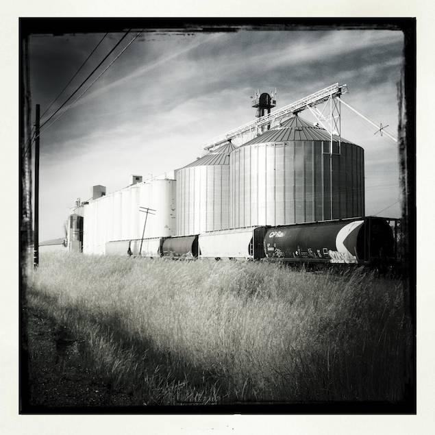 Rice Silos, Artois, California