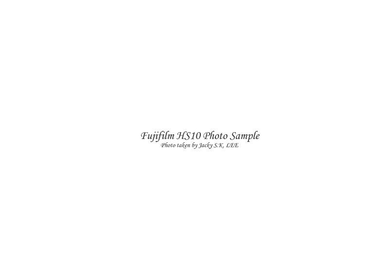focus distance = 12 cm (external direct flash on)
