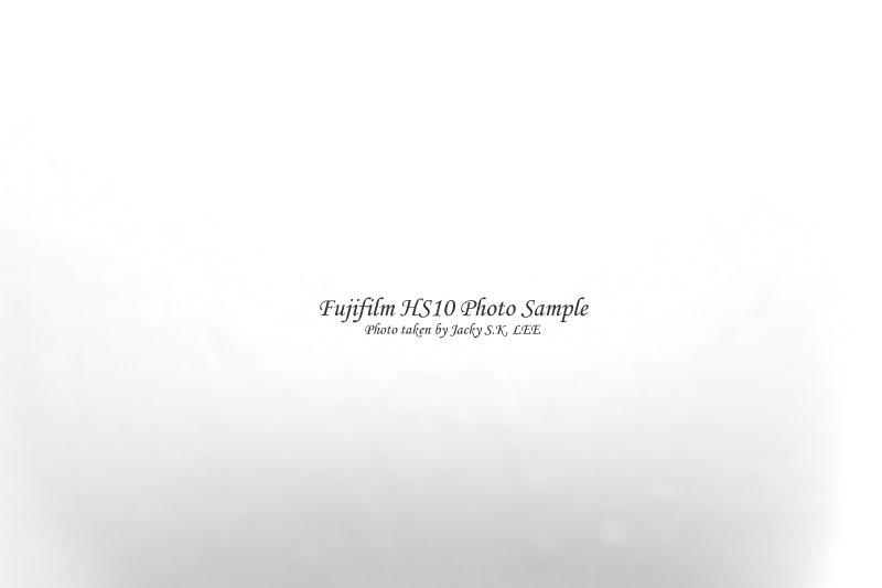 focus distance = 1 cm (external bounch flash on)