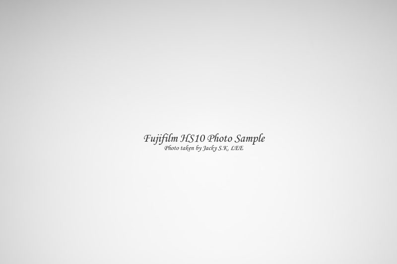 50mm f/8 (with filter & hood)