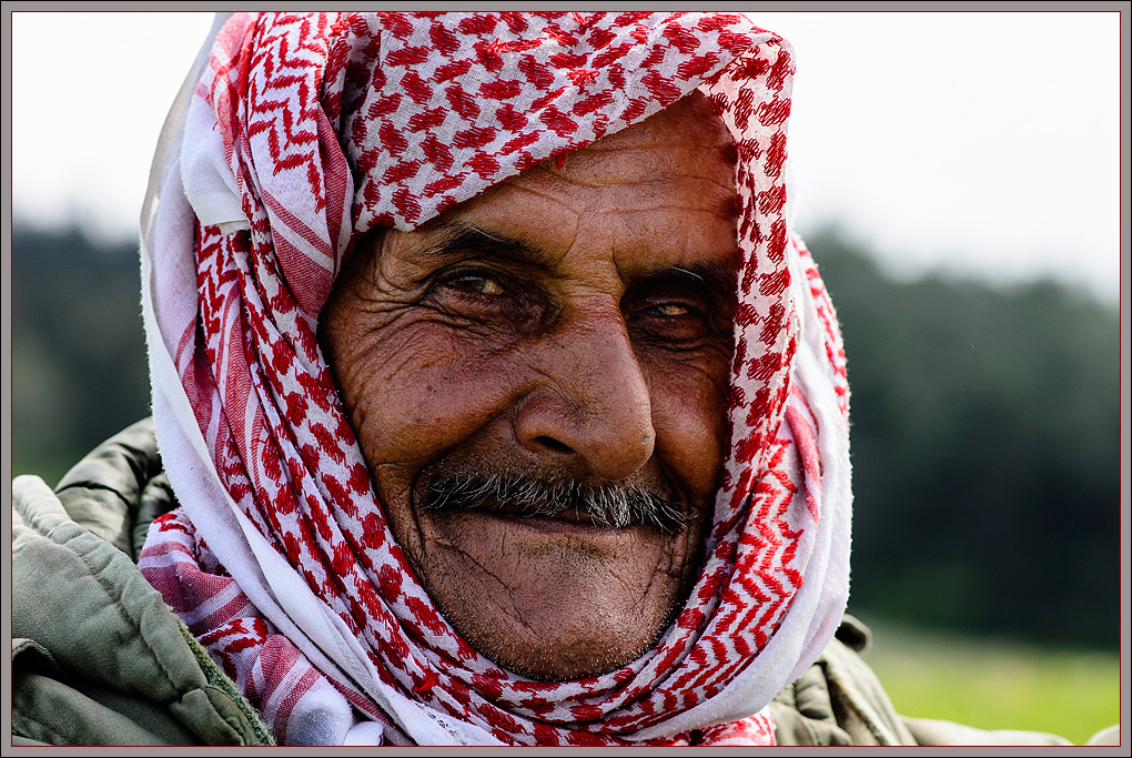 Son of Arabia
