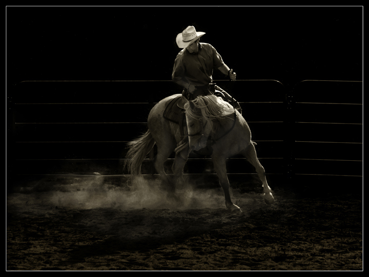 2nd Place<BR>The Cowboy<br>by Lydia Too