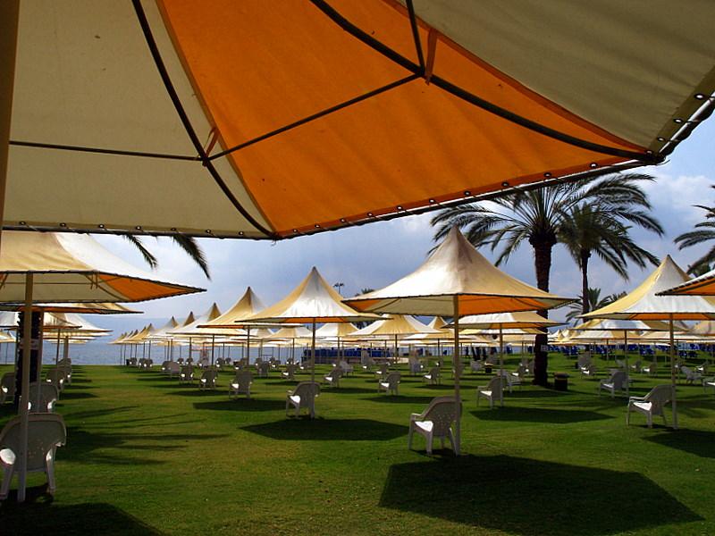 tib umbrellas7.JPG