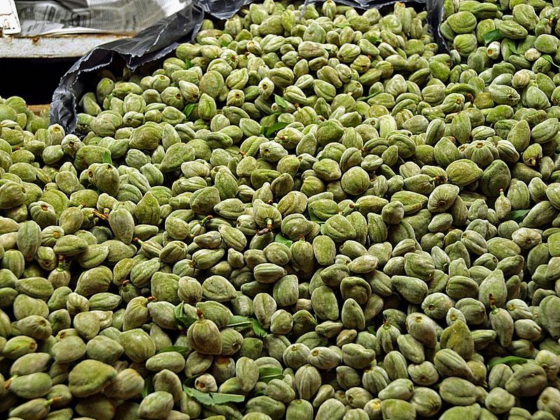 green almonds1.jpg