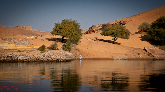 Banks of the Nile at Aswan