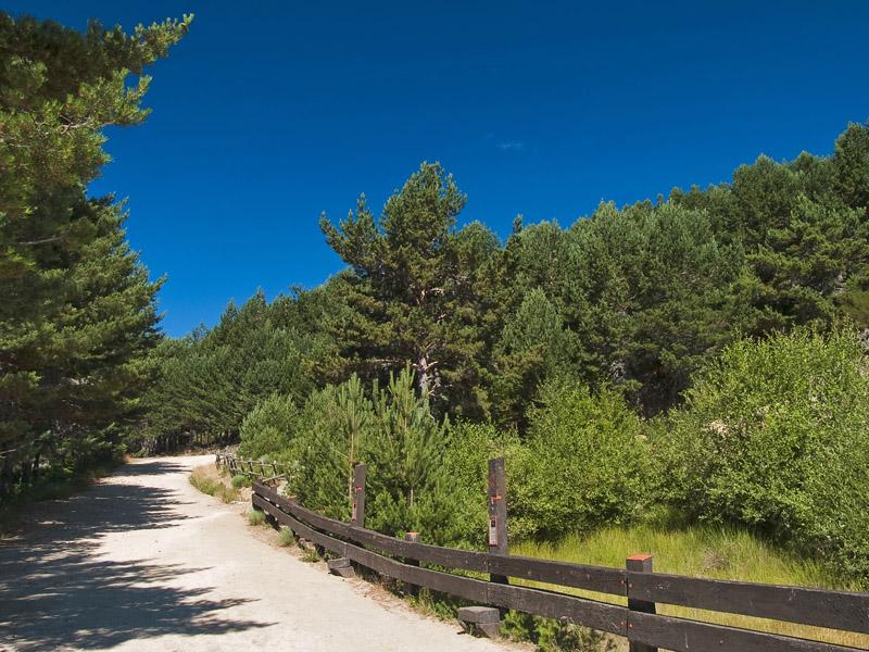Vía hacia el Pico / Route towards the Peak
