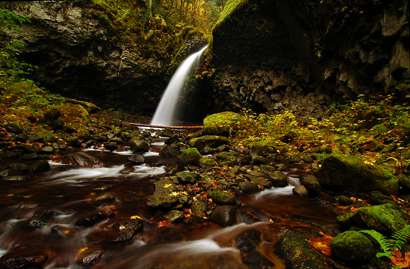 Oneonta Falls #3
