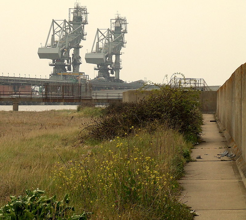 The footpath along the front of the sea wall