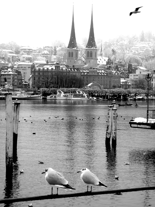 Luzern_Switzerland_180086.jpg