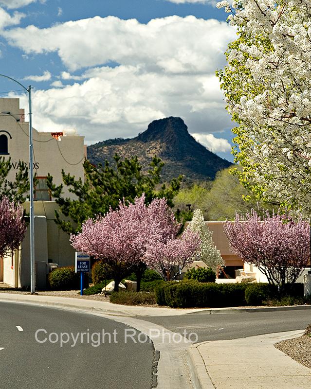 07-03 Prescott Spring 01.JPG