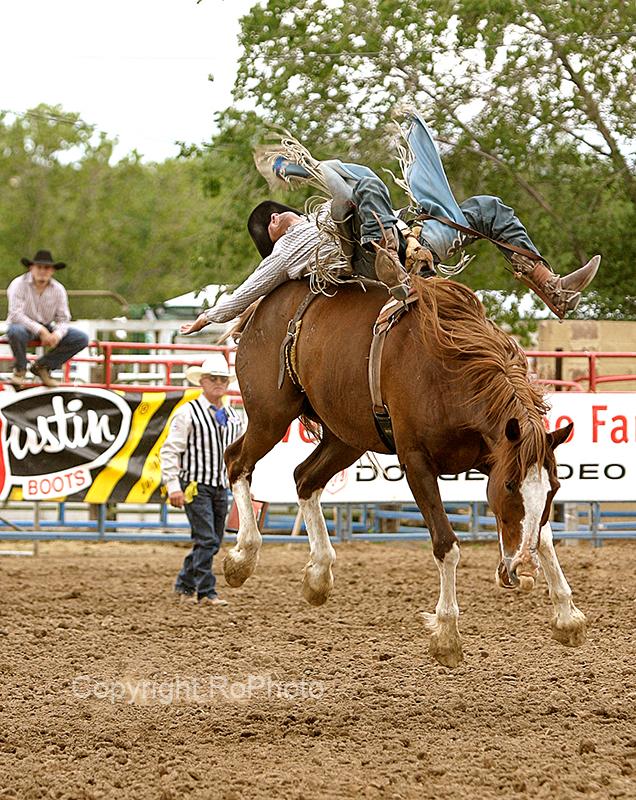 06-07 Rodeo 06.JPG