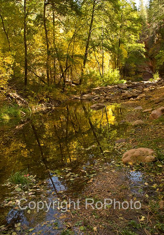 08-10 Oak Creek West Fork 34.JPG