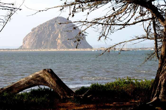 Central Coast icon,Morro Rock(CA)