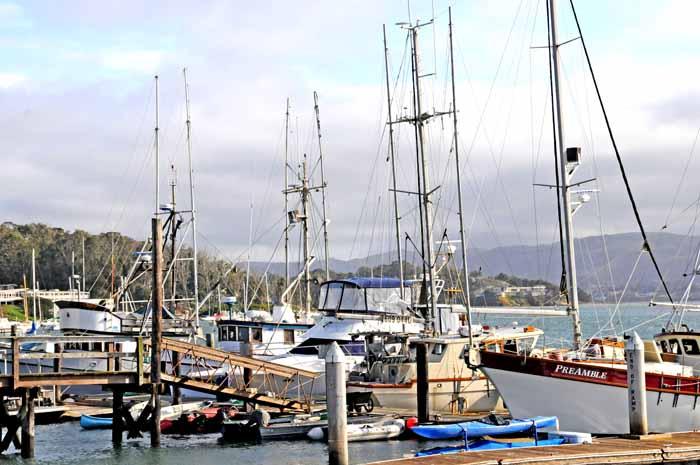 Californias Central Coast