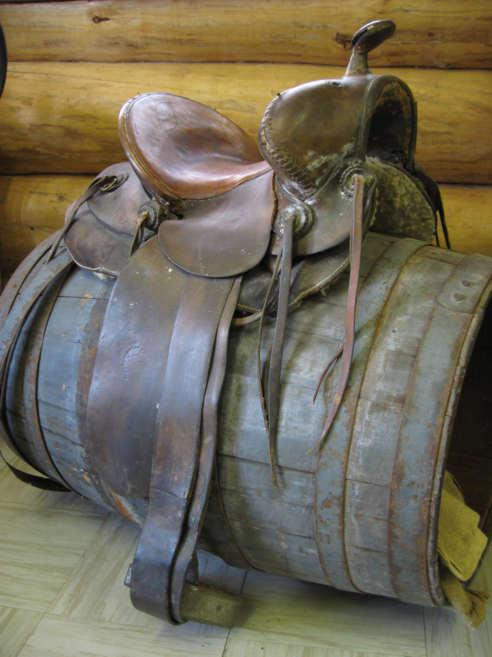 SaddleOld.jpg