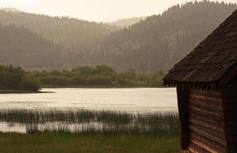 Canim Lake morning.jpg