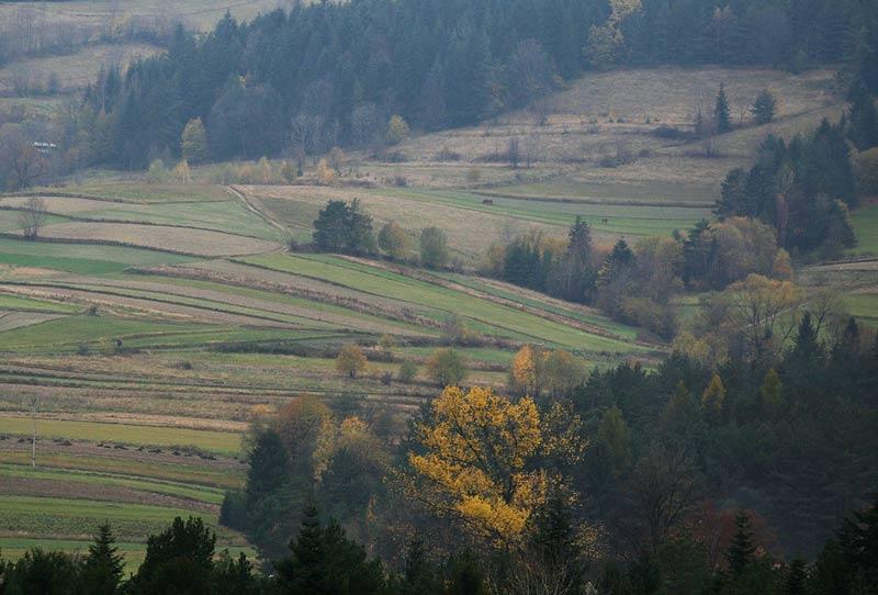 landscape around Mszana Dolna