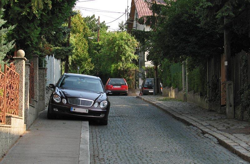 Pedestrian Blocker