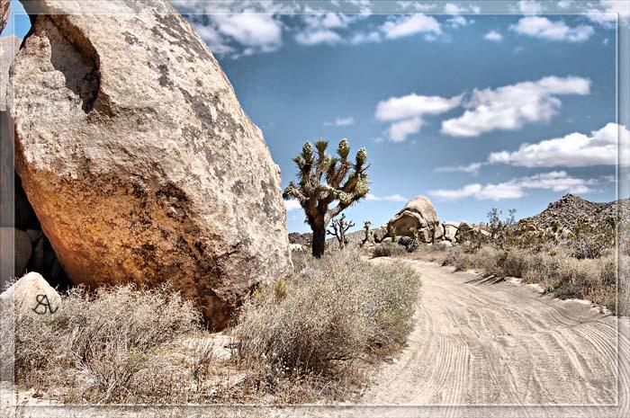 Desert Trail.