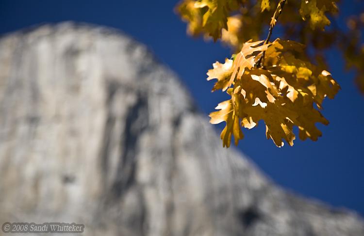 Autumn and the Mountain