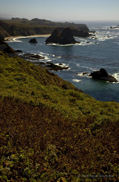 Rocky Shores of Northern California