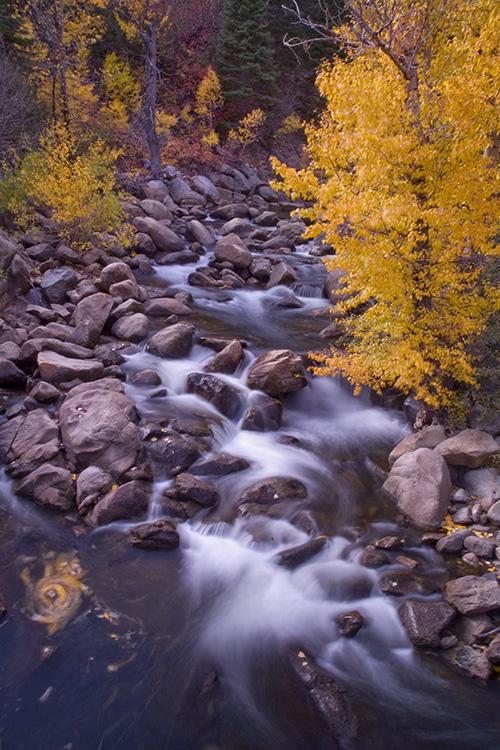 Hope Valley, a River Runs through It