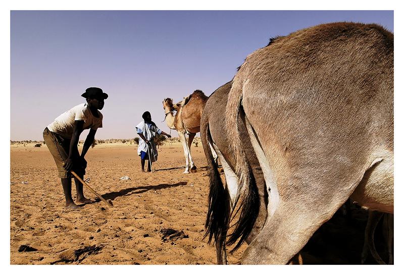 Mauritanie - Puiser la vie 18