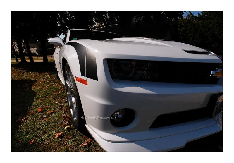 Various Automobile 2011 75