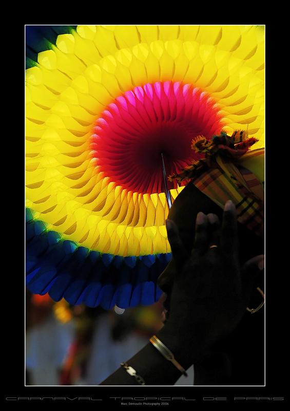 Carnaval Tropical de Paris 2006 - 17