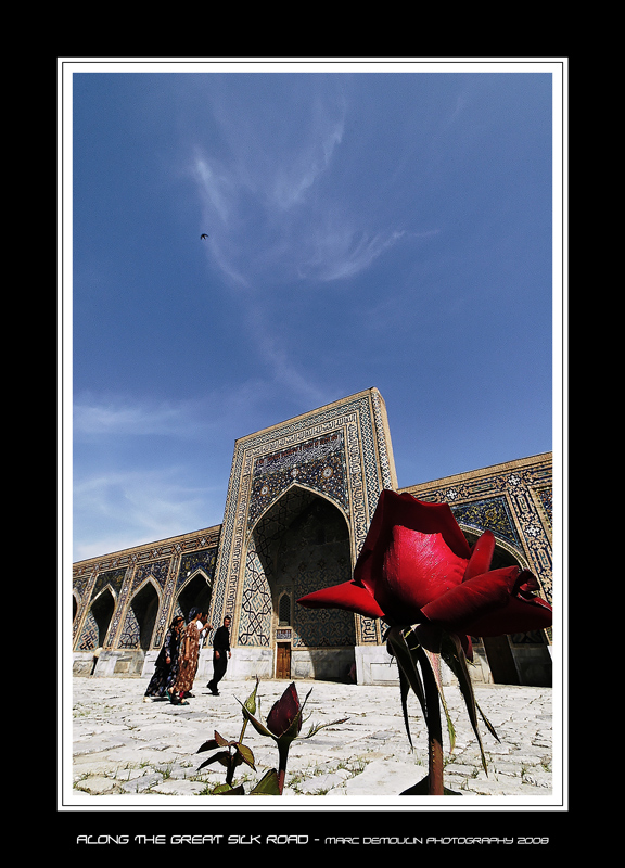 Along the great silk road 29