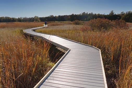 Marsh Boardwalk 09179
