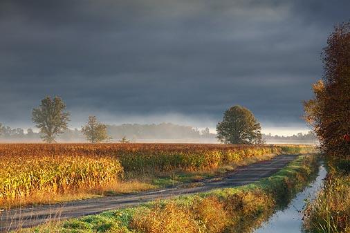 Field Road 09015