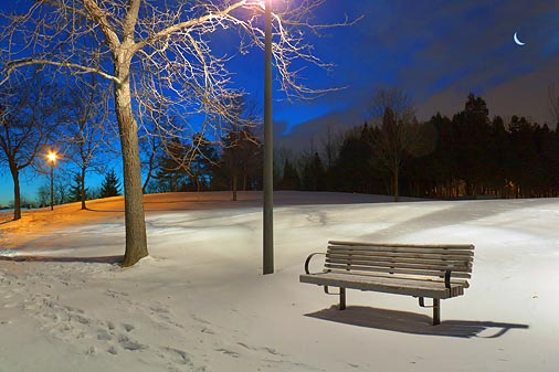 Park Bench In First Light 20091212