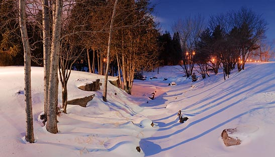 Park In First Light 11535-6