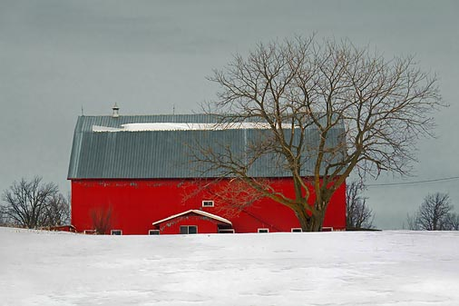 Red Barn & Tree 20110216