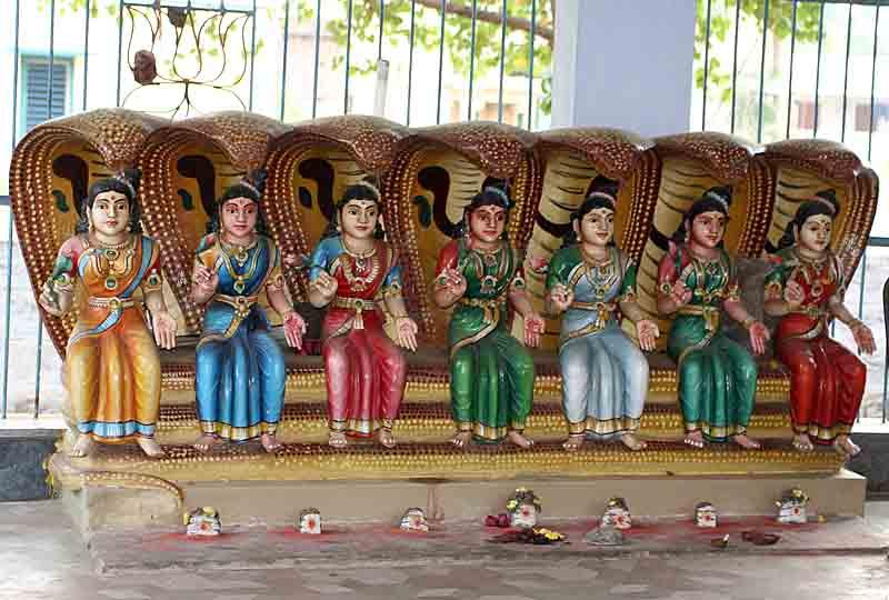 Saptamatrika Goddesses the Seven Divine Mothers protected by snakes. http://www.blurb.com/books/3782738