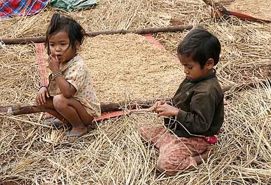 Phnong children in a paddy field. Pu Lang Village II, Mondulkiri, Cambodia