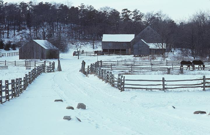 Old Bethpage Farm