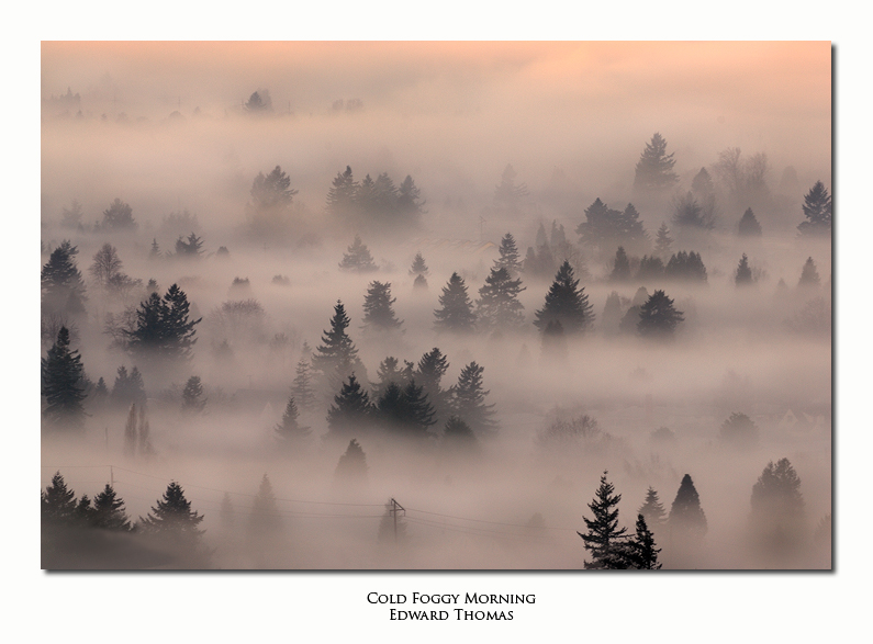 Cold Foggy Morning