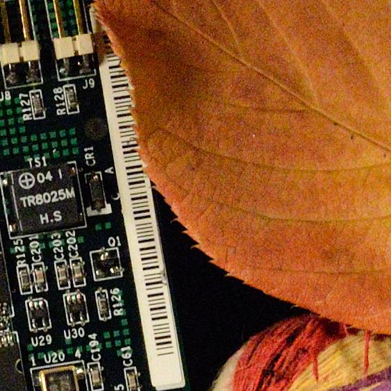 D3100-3200-crop.jpg