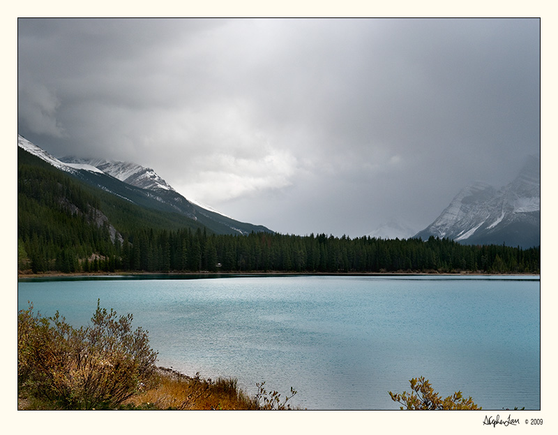 20091006_Jasper_0447.jpg