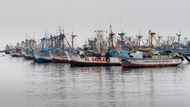 20120518_Paracas_0208.jpg