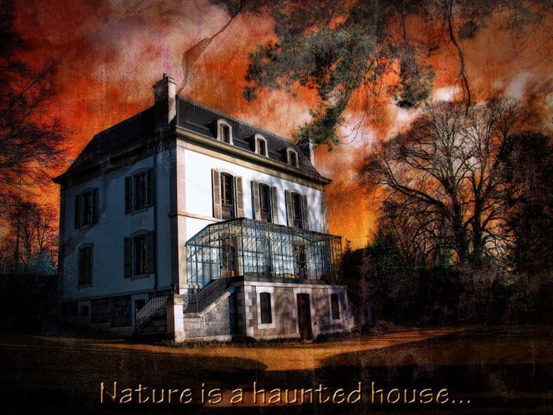 Nature is a haunted house, but Art is a house that tries to be haunted.